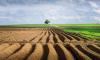 Продать земельный участок можно легко и безопасно с онлайн-платформой LandInvest